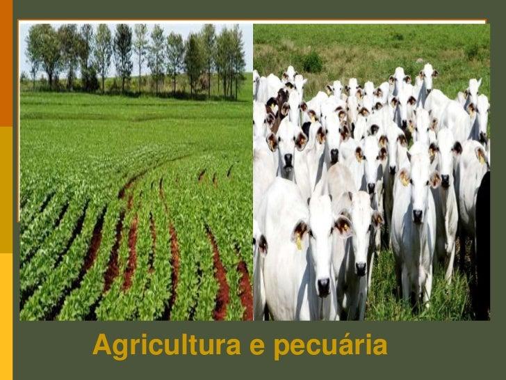 GEOGRAFIA HOMEM & ESPAÇO <br />6º ANO<br />ELIAN ALABI LUCCI E ANSELMO LAZARO BRANCO<br />Agricultura e pecuária<br />