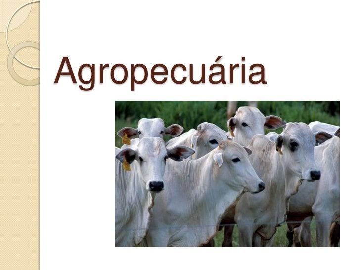 Agropecuária<br />