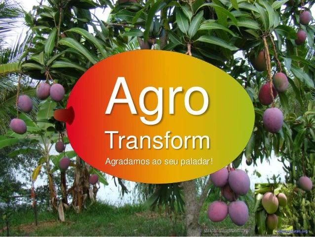 Agro Transform  Agro Transform Agradamos ao seu paladar!