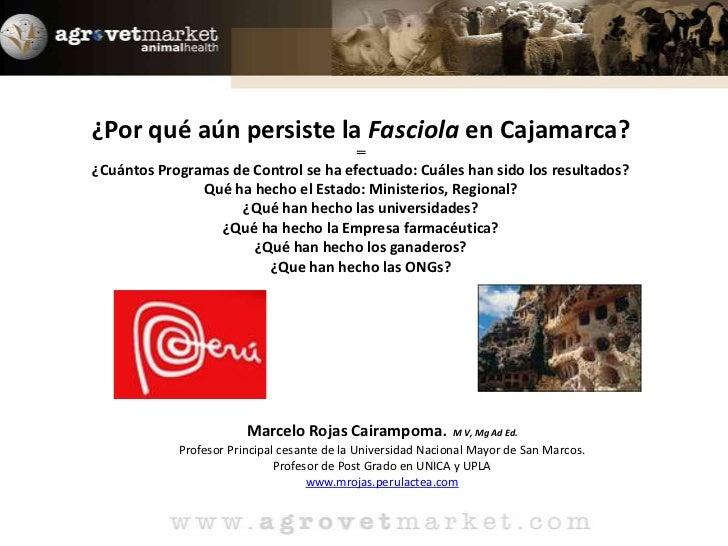 ¿Por qué aún persiste la Fasciola en Cajamarca?═¿Cuántos Programas de Control se ha efectuado: Cuáles han sido los resulta...