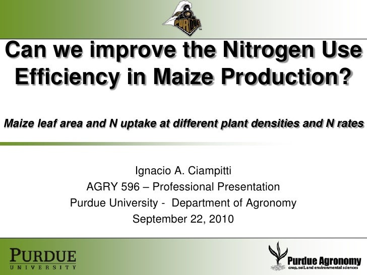 Can we improve the Nitrogen Use Efficiency in Maize Production?Maize leaf area and N uptake at different plant densities a...