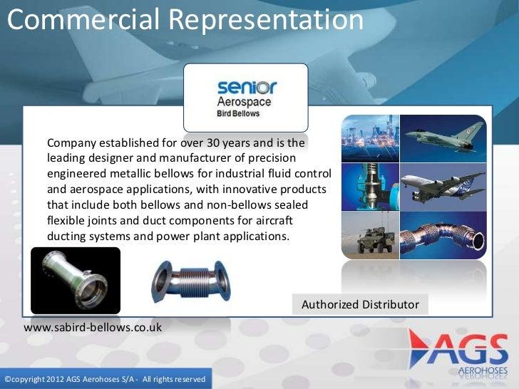 Ags portfolio presentation in english
