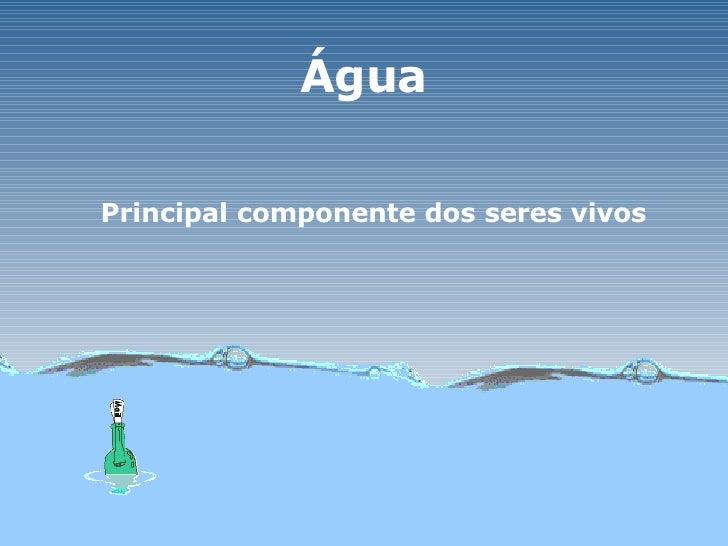 Água Principal componente dos seres vivos
