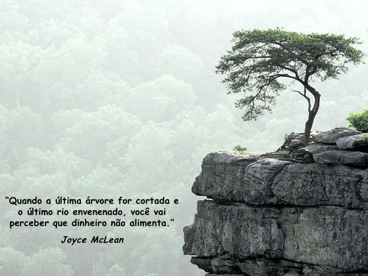 """"""" Quando a última árvore for cortada e o último rio envenenado, você vai perceber que dinheiro não alimenta."""" Joyce McLean"""