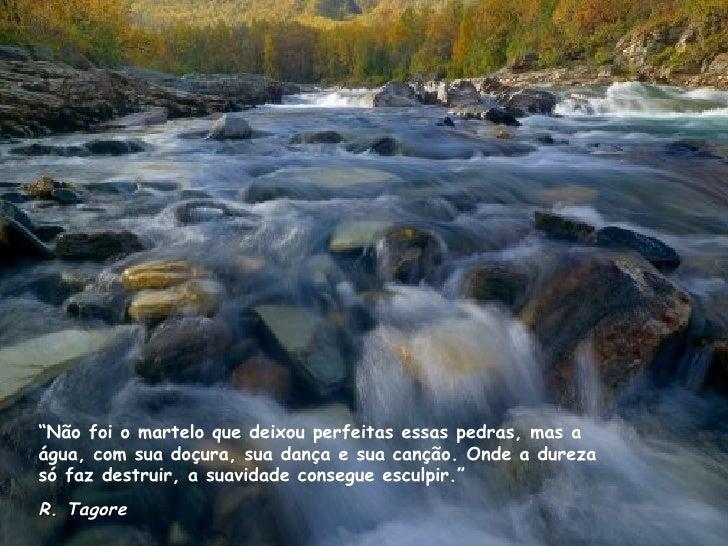 """"""" Não foi o martelo que deixou perfeitas essas pedras, mas a água, com sua doçura, sua dança e sua canção. Onde a dureza s..."""