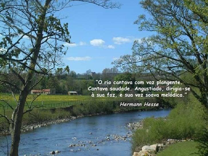 """"""" O rio cantava com voz plangente. Cantava saudade. Angustiado, dirigia-se à sua foz, e sua voz soava melódica."""" Hermann H..."""