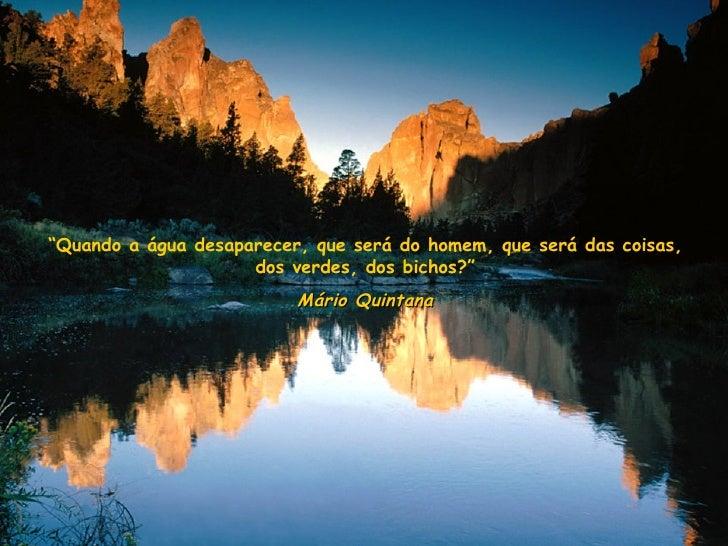 """"""" Quando a água desaparecer, que será do homem, que será das coisas, dos verdes, dos bichos?"""" Mário Quintana"""