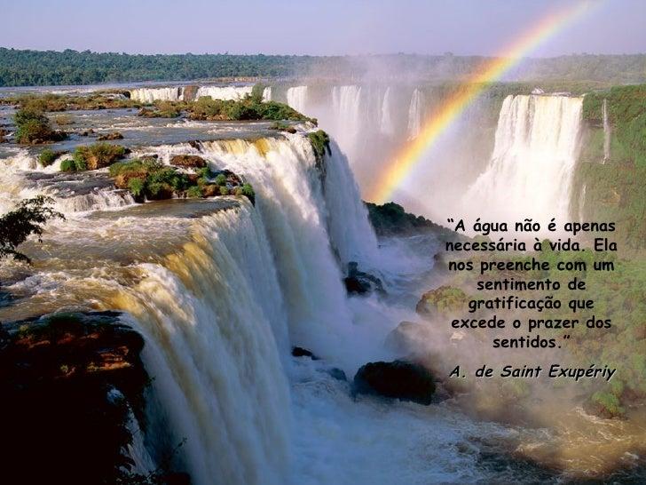 """"""" A água não é apenas necessária à vida. Ela nos preenche com um sentimento de gratificação que excede o prazer dos sentid..."""