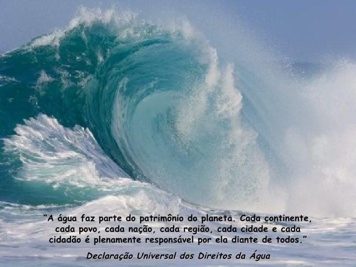 """"""" A água faz parte do patrimônio do planeta. Cada continente, cada povo, cada nação, cada região, cada cidade e cada cidad..."""