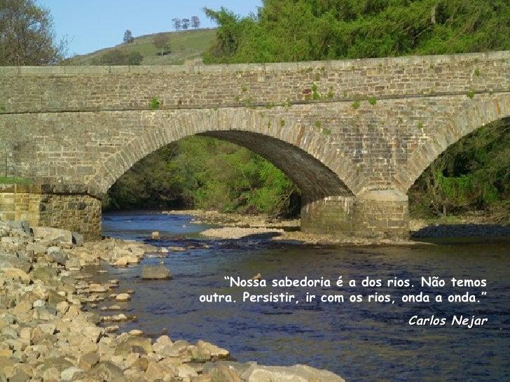 """"""" Nossa sabedoria é a dos rios. Não temos outra. Persistir, ir com os rios, onda a onda."""" Carlos Nejar"""