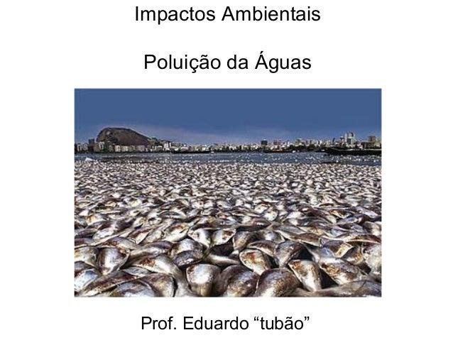 """Impactos Ambientais Poluição da Águas Prof. Eduardo """"tubão"""""""