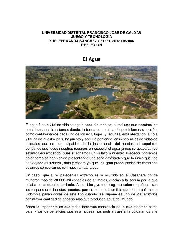 UNIVERSIDAD DISTRITAL FRANCISCO JOSE DE CALDAS JUEGO Y TECNOLOGIA YURI FERNANDA SANCHEZ CEDIEL 20121187086 REFLEXION El Ag...