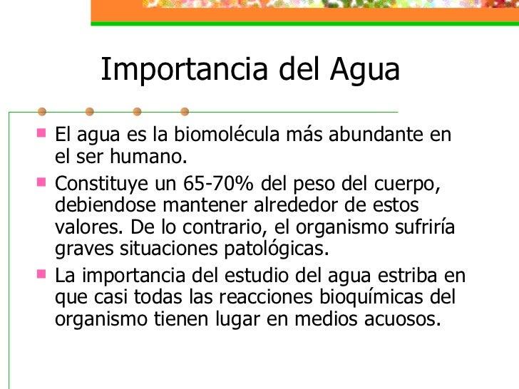 Agua y cuerpo humano for Importancia de la oficina wikipedia