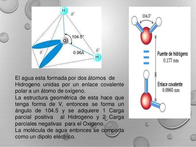 El Agua Propiedades Físicas Quimicas Y Coligativas