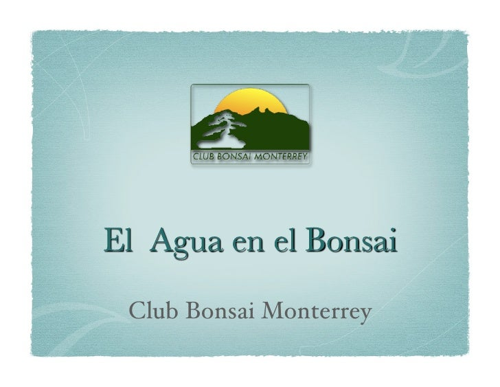 Club Bonsai Monterrey