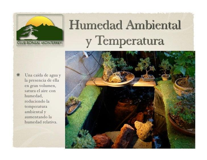 Una caída de agua y    la presencia de ella    en gran volumen,    satura el aire con    humedad,    reduciendo la    te...