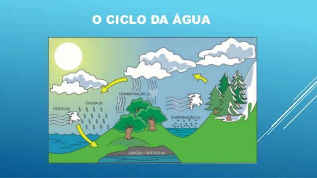 A água no planeta terra