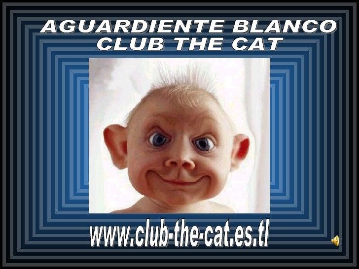 www.club-the-cat.es.tl AGUARDIENTE BLANCO CLUB THE CAT