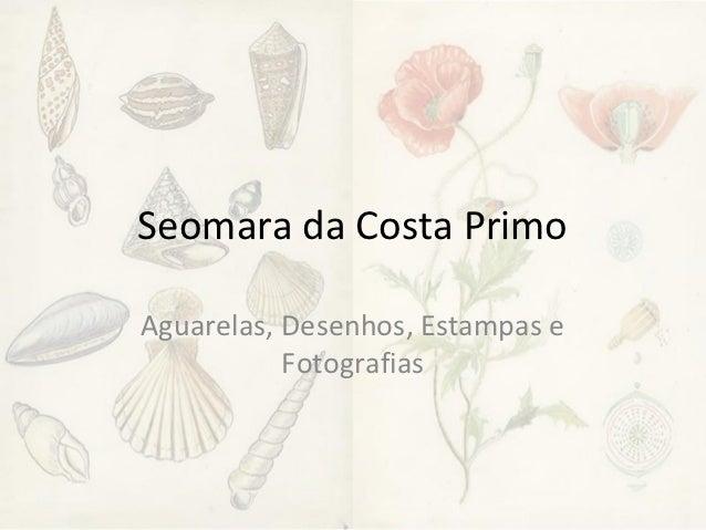 Seomara da Costa PrimoAguarelas, Desenhos, Estampas e           Fotografias