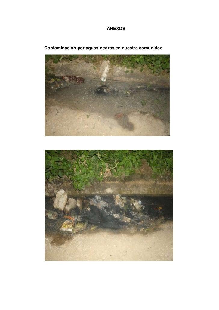 ANEXOSContaminación por aguas negras en nuestra comunidad