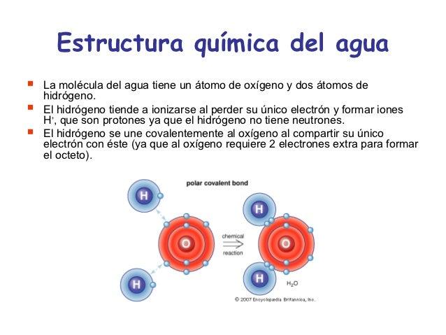 Agua solvente universal 1 for Molecula definicion