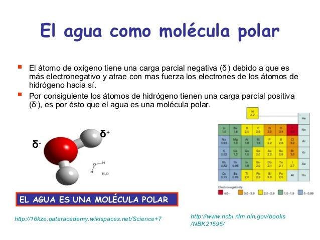 Agua solvente universal 1 for Que significa molecula