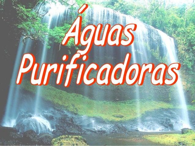 Aguas purificadoras existe um rio senhor