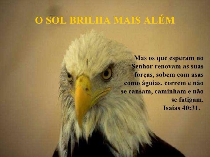 Mas os que esperam no Senhor renovam as suas forças, sobem com asas como águias, correm e não se cansam, caminham e não se...
