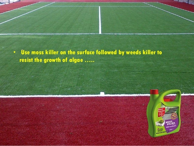 Essay/Term paper: Artificial turf: a dangerous playing surface