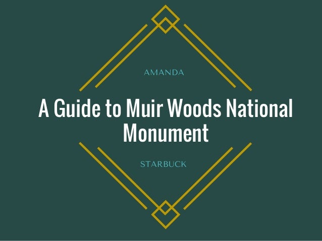A Guide to Muir Woods National Monument AMANDA  STARBUCK