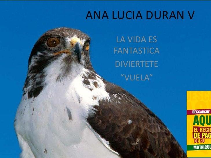 """ANA LUCIA DURAN V<br />LA VIDA ES FANTASTICA<br />DIVIERTETE <br />""""VUELA"""" <br />"""
