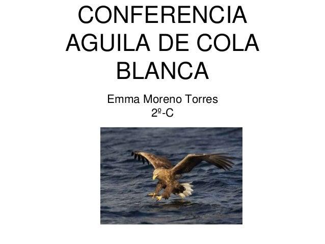 CONFERENCIA AGUILA DE COLA BLANCA Emma Moreno Torres 2º-C