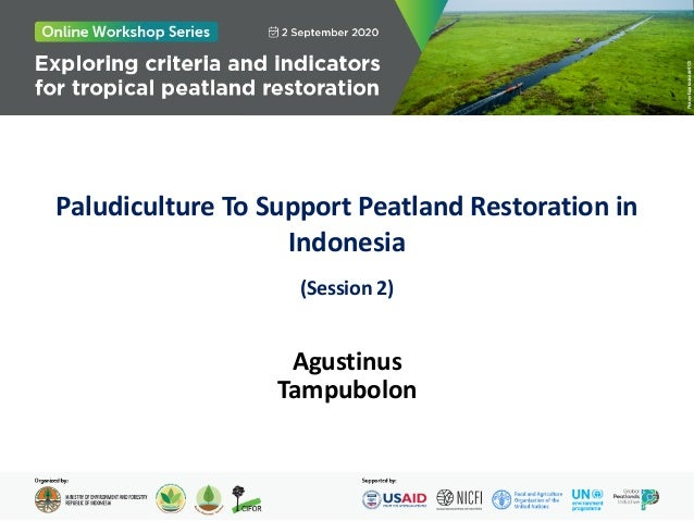 Paludiculture To Support Peatland Restoration in Indonesia (Session 2) Agustinus Tampubolon