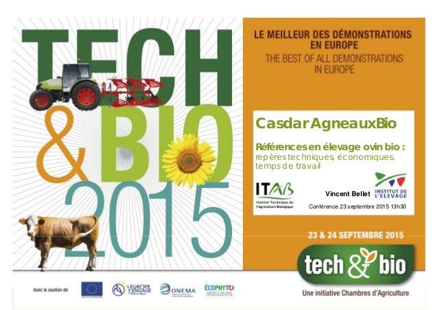 Casdar AgneauxBio Références en élevage ovin bio : repères techniques, économiques, temps de travail Conférence 23 septemb...