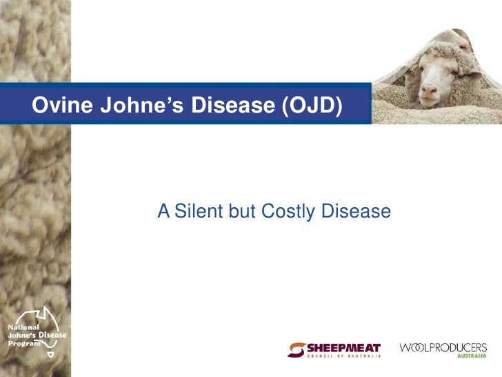 Ovine Johne's Disease (OJD)          A Silent but Costly Disease