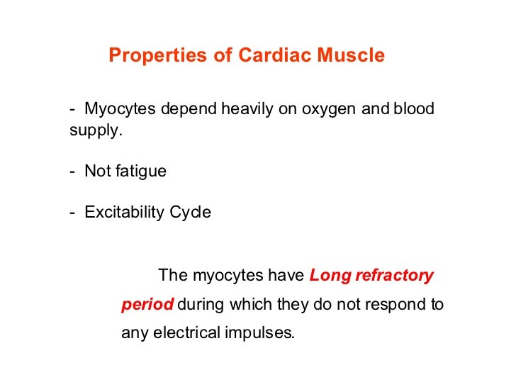 A Heart Physiology