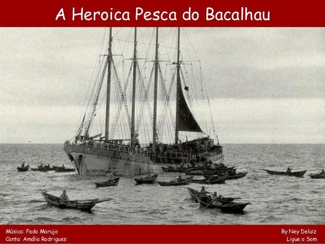 A Heroica Pesca do BacalhauMúsica: Fado Marujo By Ney DeluizCanta: Amália Rodrigues Ligue o Som