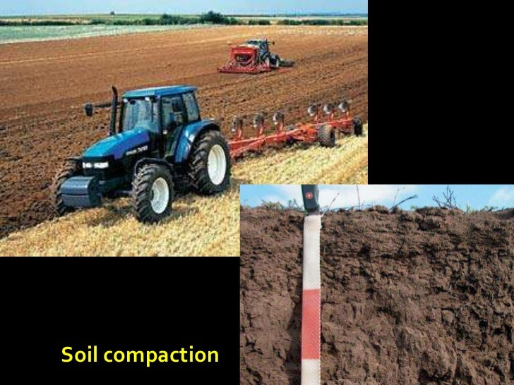 A hidden habitat 2010 10 14 low res 2 for Soil 95 compaction