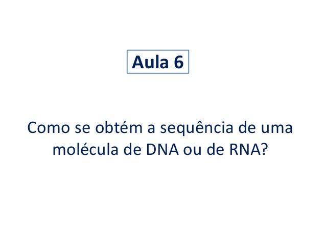 Aula 6  Como se obtém a sequência de uma  molécula de DNA ou de RNA?
