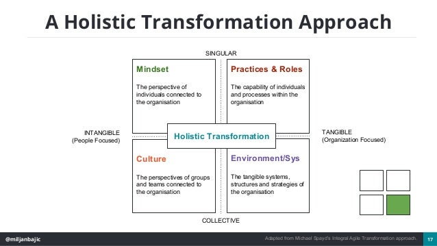 @miljanbajic 17 A Holistic Transformation Approach Adapted from Michael Spayd's Integral Agile Transformation approach. SI...