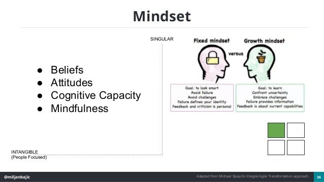 @miljanbajic 36 Mindset SINGULAR INTANGIBLE (People Focused) ● Beliefs ● Attitudes ● Cognitive Capacity ● Mindfulness Adap...