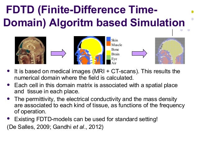 FDTD (Finite-Difference Time- Domain) Algoritm based Simulation  It is based on medical images (MRI + CT-scans). This res...