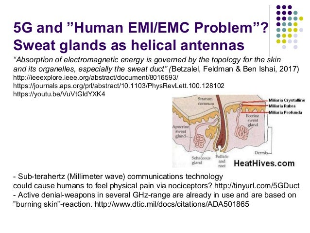 """5G and """"Human EMI/EMC Problem""""? Sweat glands as helical antennas """"Absorption of electromagnetic energy is governed by the ..."""