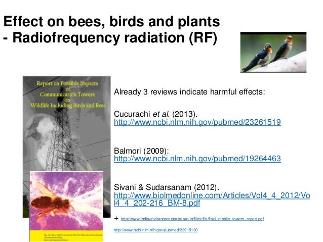 Mittuniversitetet Effect on bees, birds and plants - Radiofrequency radiation (RF) Already 3 reviews indicate harmful effe...
