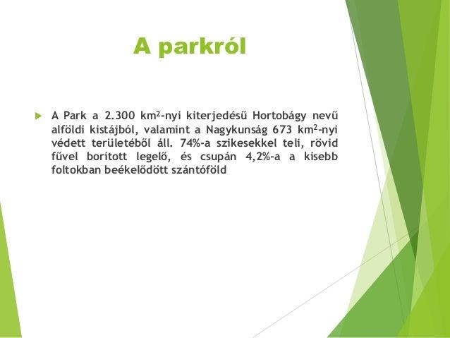 A parkról  A Park a 2.300 km2-nyi kiterjedésű Hortobágy nevű alföldi kistájból, valamint a Nagykunság 673 km2-nyi védett ...