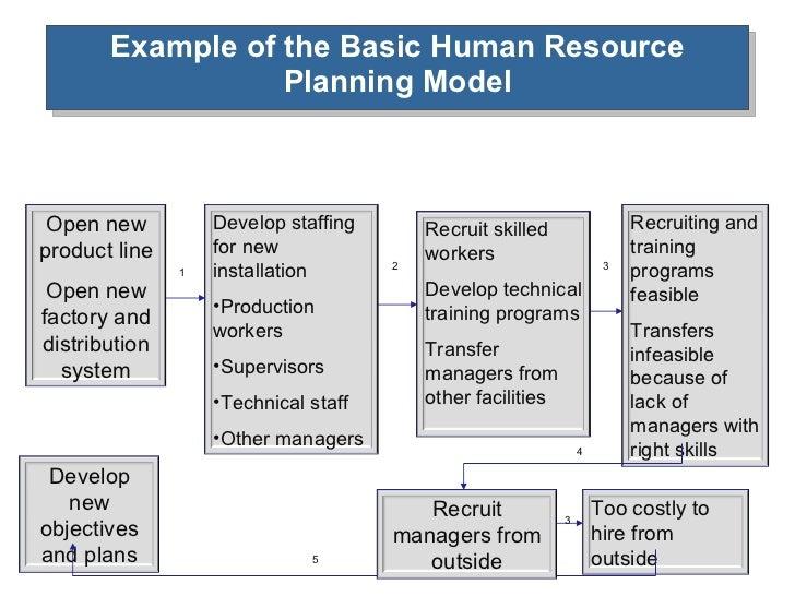 Human resource planning example of the basic human resource planning wajeb Gallery