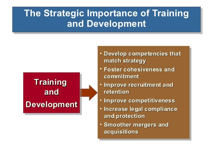 the importance of training and development Human resource management regards training and development as a function  concerned with  here are some important benefits of training and development  increased productivity less supervision job satisfaction skills development.
