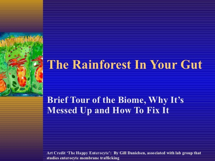 The Rainforest In Your Gut Brief Tour of the Biome, Why It's Messed Up and How To Fix It Art Credit 'The Happy Enterocyte'...