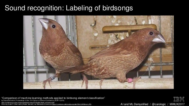 "AI and ML Demystified / @carologic / MWUX2017 Sound recognition: Labeling of birdsongs ""Comparison of machine learning met..."