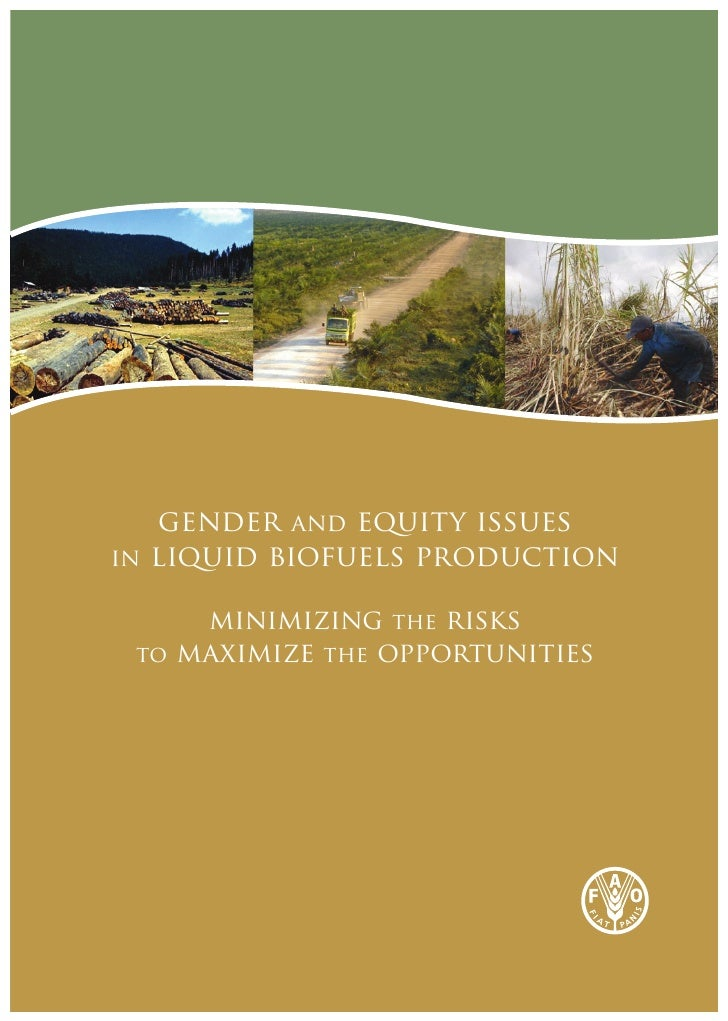 gender and equity issuesin liquid biofuels production     minimizing the risks to maximize the opportunities